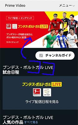 「ブンデス・ポルトガルLIVE トップページ」画面